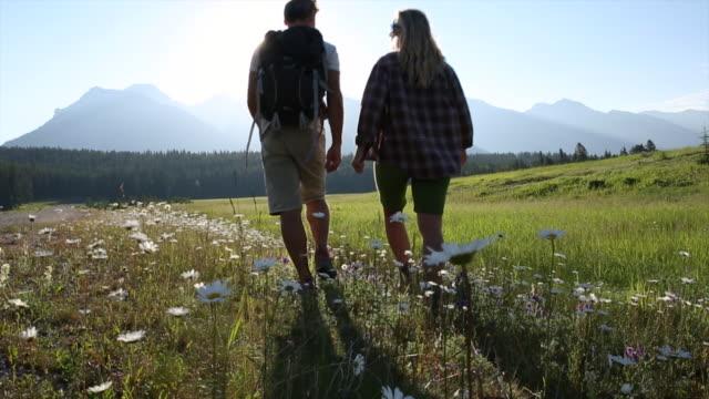 カップルは、山の草原を歩いて、話す - 方向点の映像素材/bロール