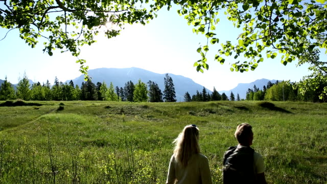 couple walk under new aspen leaves - social grace stock videos & royalty-free footage
