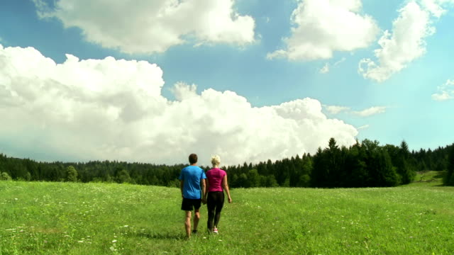 HD CRANE: Couple Walking Across Meadow
