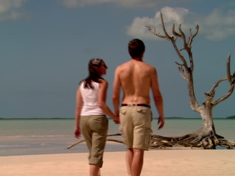 ms,  couple walking by dry tree on sandy beach,  rear view,  harbour island,  bahamas - kosmetisches stirnband stock-videos und b-roll-filmmaterial