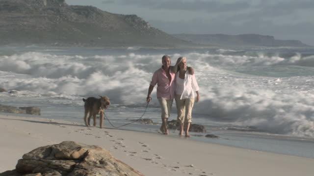 vídeos de stock e filmes b-roll de couple walking dog by the sea - 50 54 anos