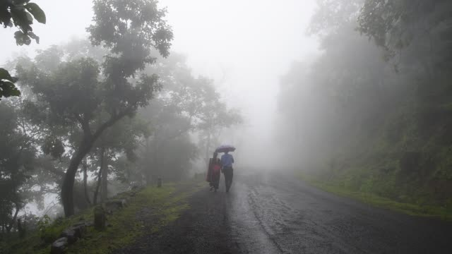 couple walking in mist on forest road at morning. - fog stock videos & royalty-free footage