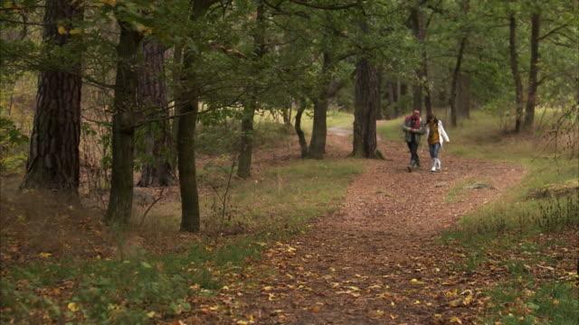 a couple walking in the forest sweden. - gemeinsam gehen stock-videos und b-roll-filmmaterial