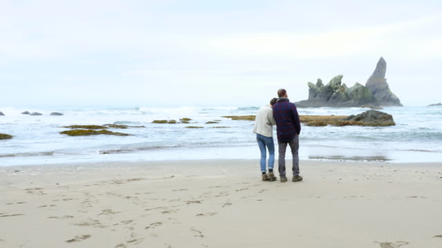 WS TS Couple walking on beach arm and arm rear view