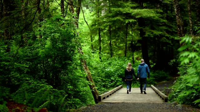 couple walking on boardwalk in forest - adult stock videos & royalty-free footage