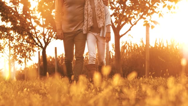 couple walking on meadow at sunset - mid adult couple stock videos & royalty-free footage