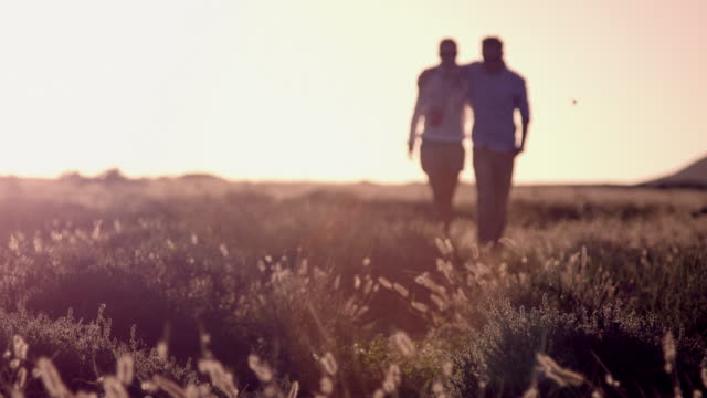 Paar walking on meadow