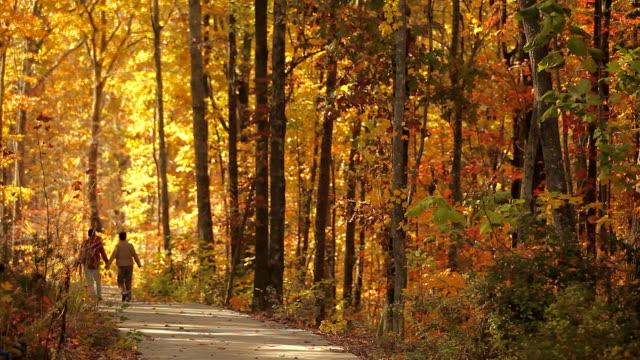 vídeos de stock e filmes b-roll de couple walking on path in forests. - outono