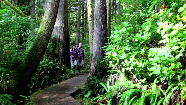 Couple Walking Pacific Rim National Park Reserve Vancouver Island