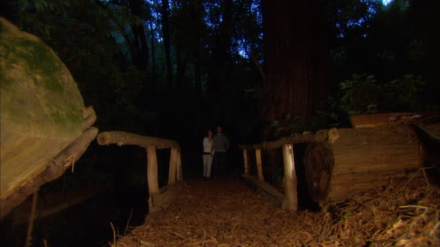 ms, la, couple walking through footbridge in forest, ragged point, california, usa - ragged point stock videos and b-roll footage
