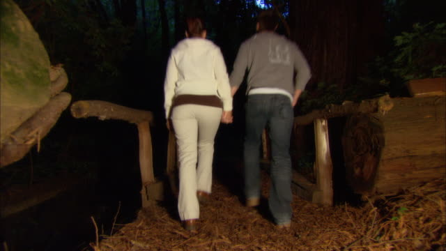 ms, couple walking through footbridge in forest, rear view, ragged point, california, usa - ragged point stock videos and b-roll footage
