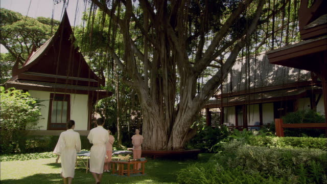 ws couple walking toward two women standing near massage tables, and then lying down on massage tables under fig tree in garden / hua hin, thailand - male with group of females stock videos & royalty-free footage