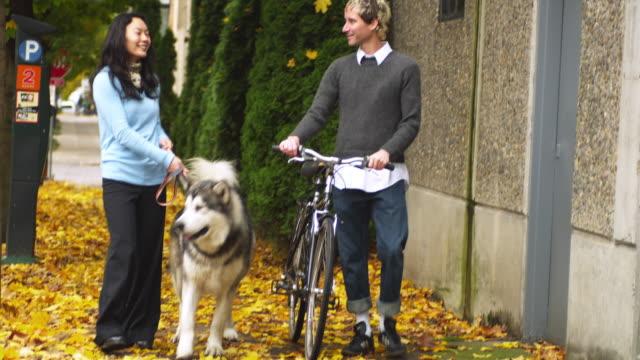 ms tu td couple walking with dog and bicycle on sidewalk / portland, oregon, usa - portland oregon bike stock videos & royalty-free footage