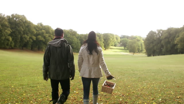 a couple with a basket full of mushrooms walking in a park sweden. - 籠点の映像素材/bロール