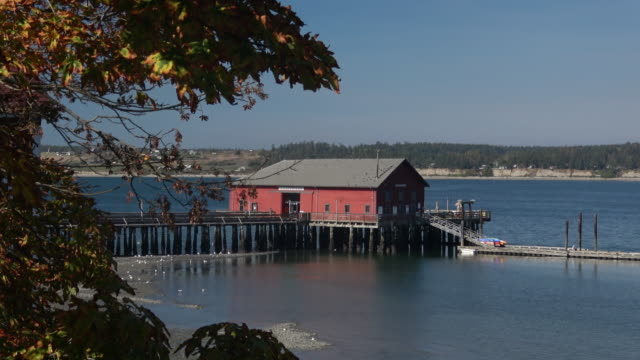 Coupville Harbor, Washington