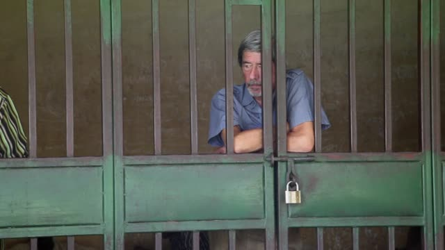 a court in uganda on wednesday ordered that a retired gay british man arrested on charges of trafficking obscene publications should be immediately... - deported stock videos & royalty-free footage