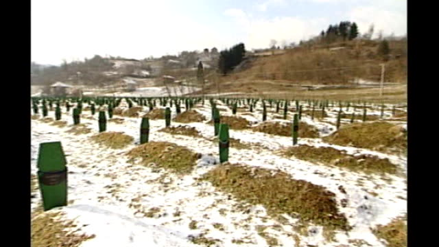 Court rules Ratko Mladic is fit to stand trial TX 1622006 Srebrenica SNOW General view of mass grave site Person praying by graves