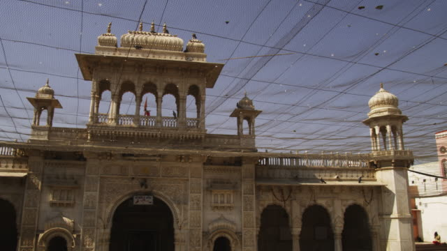 Courtyard of Karni Mata temple with pigeon flock flying overhead