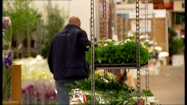 london new covent garden market int rows of flowers laid out in front of wholesale stall in new covent garden market / stallholder holding tray of... - cellophane stock videos and b-roll footage