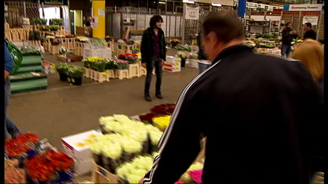 covent garden flower market; general view of market and flowers / customer with clipboard checking flowers / man taking boxes of flowers / customer... - wrapped stock videos & royalty-free footage