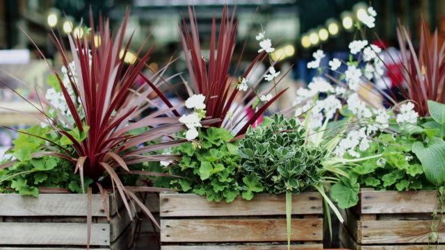 Covent Garden Market Videos and B-Roll Footage | Getty Images