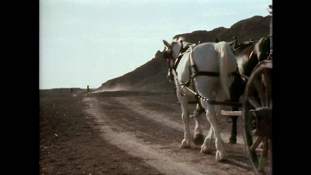covered horse-drawn waggons driving through texas desert; 1979 - 外乗点の映像素材/bロール