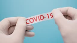 Covid-19 background. Stop spread and eliminate Coronavirus. Pandemics coronavirus. Epidemic backround. Healthcare background. Hands in blue medical gloves tearing the paper with covid-19 print