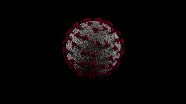 covid19 - coronavirus cell - prores 4444 rgb + alpha - alpha cell stock videos & royalty-free footage