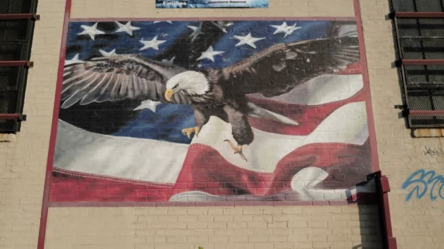covid-19 pandemic. brooklyn, nyc. greenpoint-williamsburg streets. daily life. - bird of prey stock videos & royalty-free footage