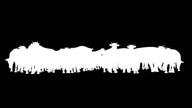 Cow Herd Silhouette (Loopable)