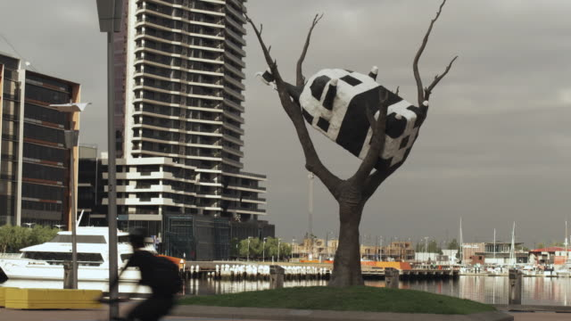 WS 'Cow up a tree' sculpture by John Kelly in Docklands, Melbourne, Victoria, Australia
