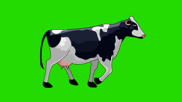 cow walk cycle animation - livestock stock videos & royalty-free footage