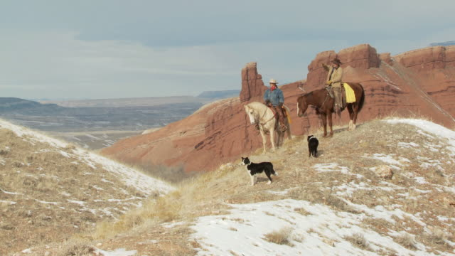 ws cowboy and cowgirl on horseback stop riding on scenic hilltop and talk while dogs are waiting / shell, wyoming, united states - fahrzeug fahren stock-videos und b-roll-filmmaterial