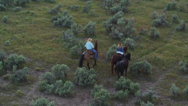vídeos de stock e filmes b-roll de cowboy and cowgirl riding home at sunset - aerial view - cavalgar