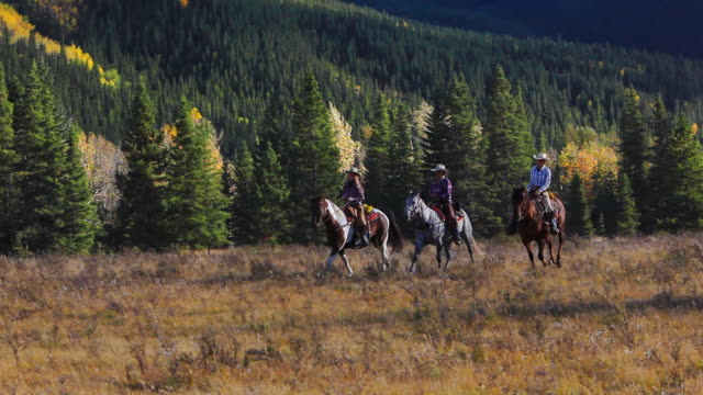 cowboy and cowgirls galloping on horseback through the mountain foothills - trail ride stock videos and b-roll footage