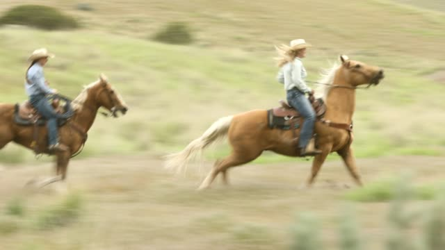 cowboy and cowgirls riding in the plains - recreational horseback riding stock videos & royalty-free footage