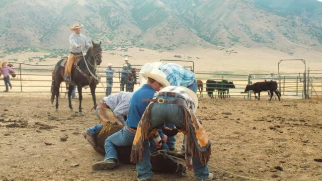 Cowboy-Rinder Branding Betrieb