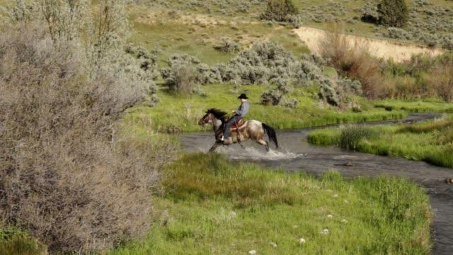 a cowboy fordes a stream on horseback - prairie stock videos & royalty-free footage