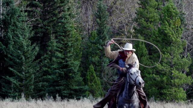 cowboy galloping on horseback swinging lariat - galoppera bildbanksvideor och videomaterial från bakom kulisserna