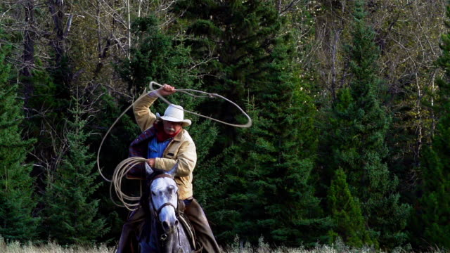 cowboy galloping on horseback swinging lariat - rancher stock videos & royalty-free footage