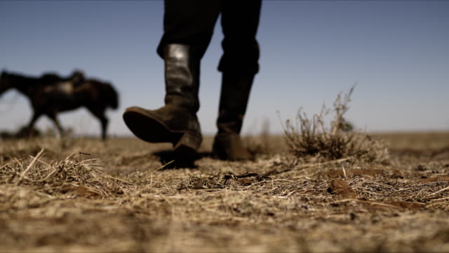 vidéos et rushes de cowboy gets off horse and walks in to focus low shot - ouest américain