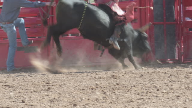 cowboy grips as bull throws him off - bucking bronco stock videos & royalty-free footage