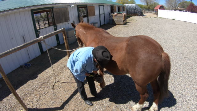 cowboy is cleaning the horseshoe - horseshoe stock videos & royalty-free footage