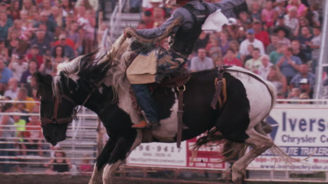 a cowboy on a bucking bronco is released from the chute at a rodeo - shot in slow motion. - rodeo stock videos & royalty-free footage