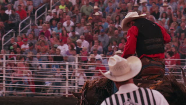 a cowboy on a bucking bronco is released from the chute at a rodeo - shot in slow motion. - 1 minute or greater stock videos & royalty-free footage