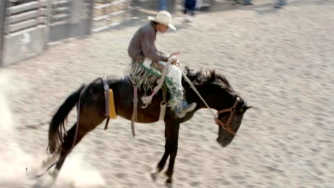 cowboy on bucking bronco horse. - rodeo stock videos & royalty-free footage