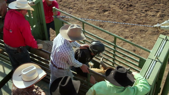 MS POV Cowboy on bull waiting inside gate and released into rodeo arena to ride  bucking bull / Wickenburg, Arizona,USA