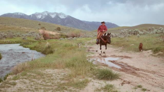 カウボーイに彼の馬を - 外乗点の映像素材/bロール