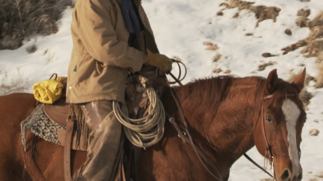 stockvideo's en b-roll-footage met slo mo ms tu cowboy on horse walking in snowy field / shell, wyoming, usa - alleen één mid volwassen man