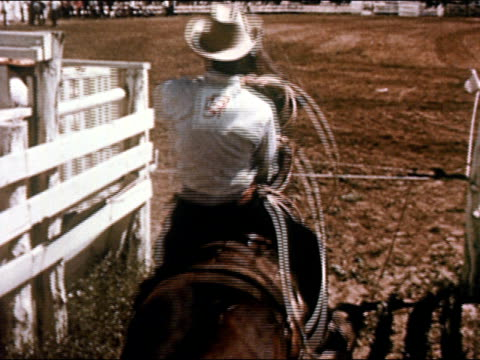1950 cowboy on horseback chasing calf with lasso in rodeo / gunnison, colorado / audio - gunnison stock videos & royalty-free footage